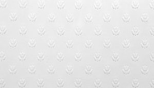 Muster 0036 RD 353 SALISBURY 300x171 - Anaglypta