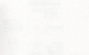 erfurt vliesfaser 733 300x188 - Erfurt