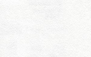 erfurt vliesfaser 735 300x188 - Erfurt