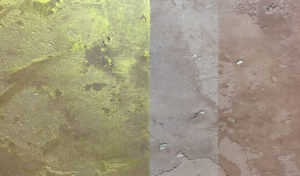 volimea M05 no 14 300x176 - Volimea