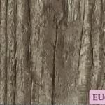 laminate flooring2 30 150x150 - Foreign Unique Marketing